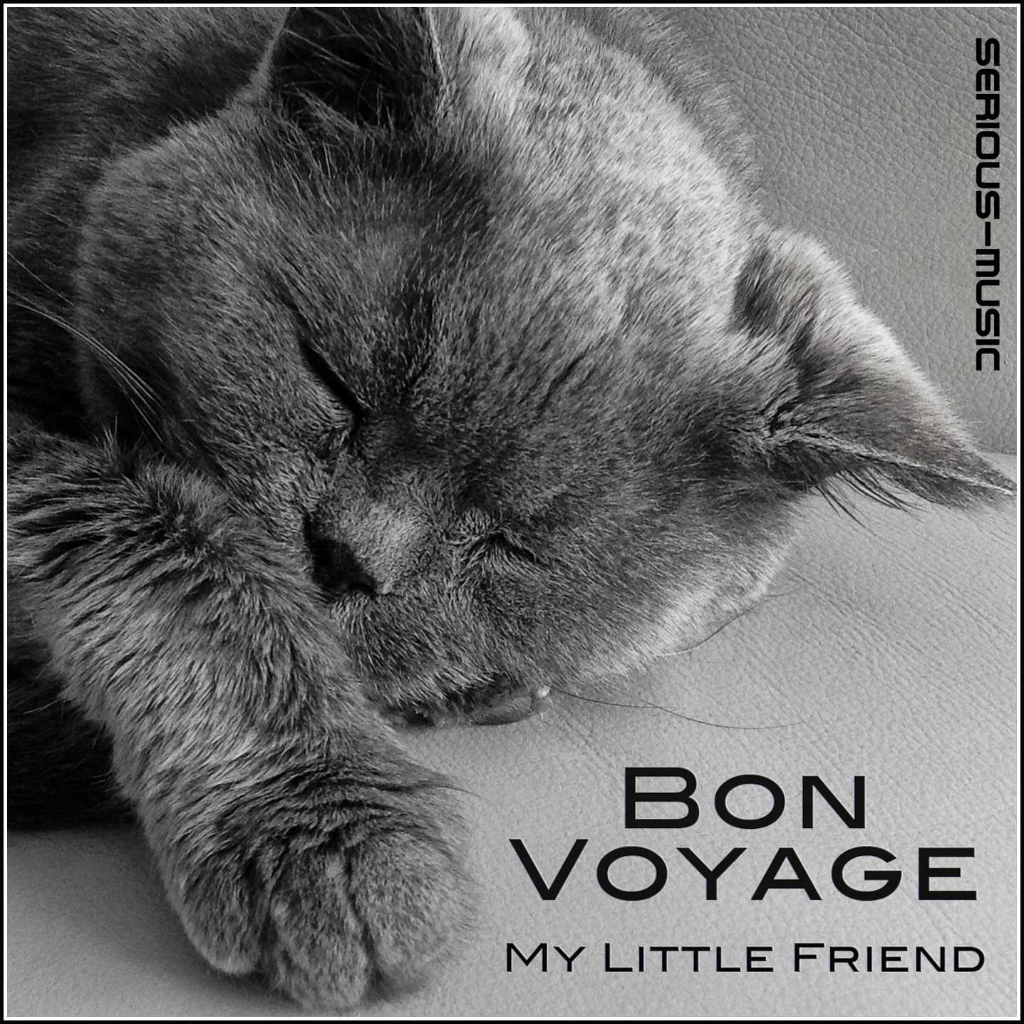 Bon Voyage My Little Friend - Album INTROSPECTIVE