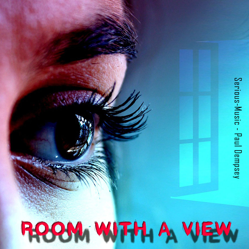 Room With A View feat. Paul Dempsey - SINGLE